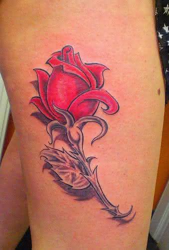 tattoo_rosa