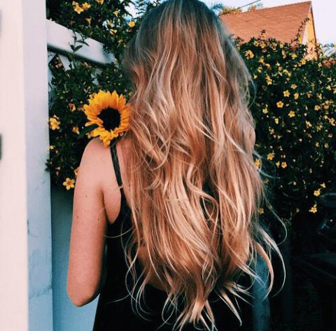 loir-escuro-cabelo-longo